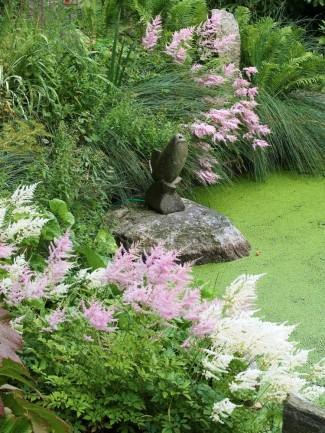 Astilbe i ljuvaste rosa och vitt ramar in den enkla skulpturen på stenen ute i det flytväxtöverklädda vattnet vid Hviids have på Fyn. Att som här blanda två färger av astilbe och låta dem komma igen lite om vartannat skapar en behagligt rofylld stämning. Goda grannar i den här kompositionen är prydnadsgräs, ormbunkar och rodgersia.