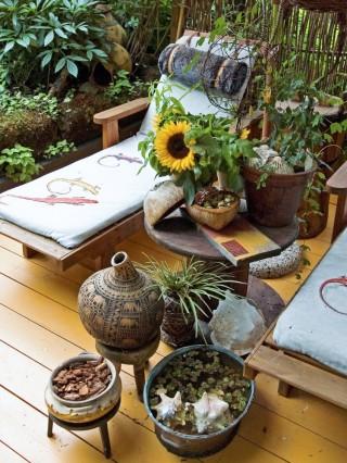 På det afrikanska däcket i Pilgården i Sundsvall är atmosfären avslappnat skön. Flätade pilplank och lummig växtlighet skapar behaglig avskildhet. Keramik, snäckor, krukväxter och en zinkbalja med vatten och flytväxter bildar ett vackert stilleben som förstärker stämningen. Här kan man lugnt dra sig tillbaka med en spännande bok och vänta på att elefanthjorden ska dundra förbi.