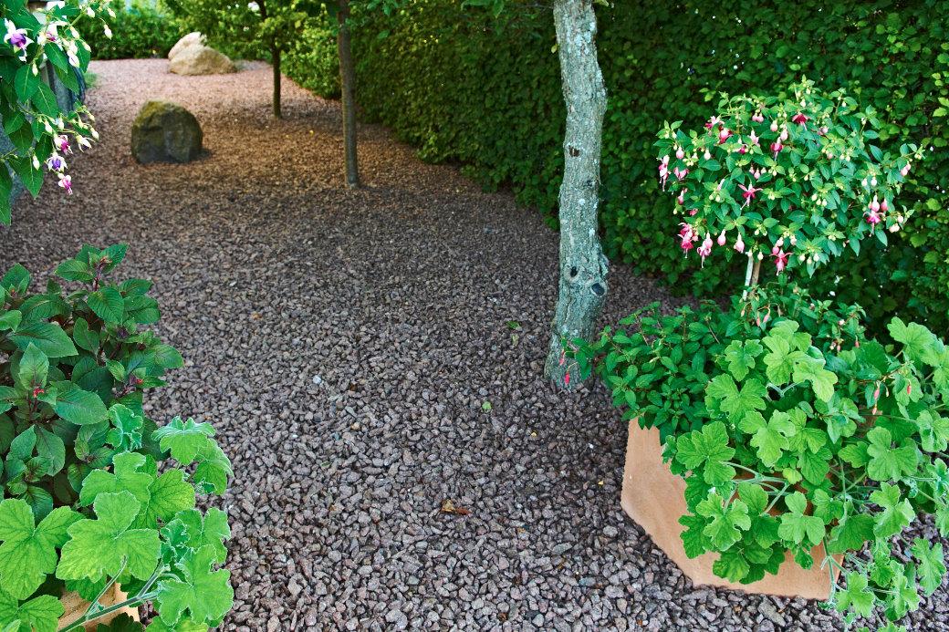 Grusträdgården längs gaveln mot gatan känns behagligt rofylld i sin avskalade enkelhet. Fruktträd och en hög häck av scharlakanshagtorn, Crataegus intricata, ger effektivt skydd mot gatan. Fuchsior och doftpelargoner i krukor ramar in och betonar ingången.