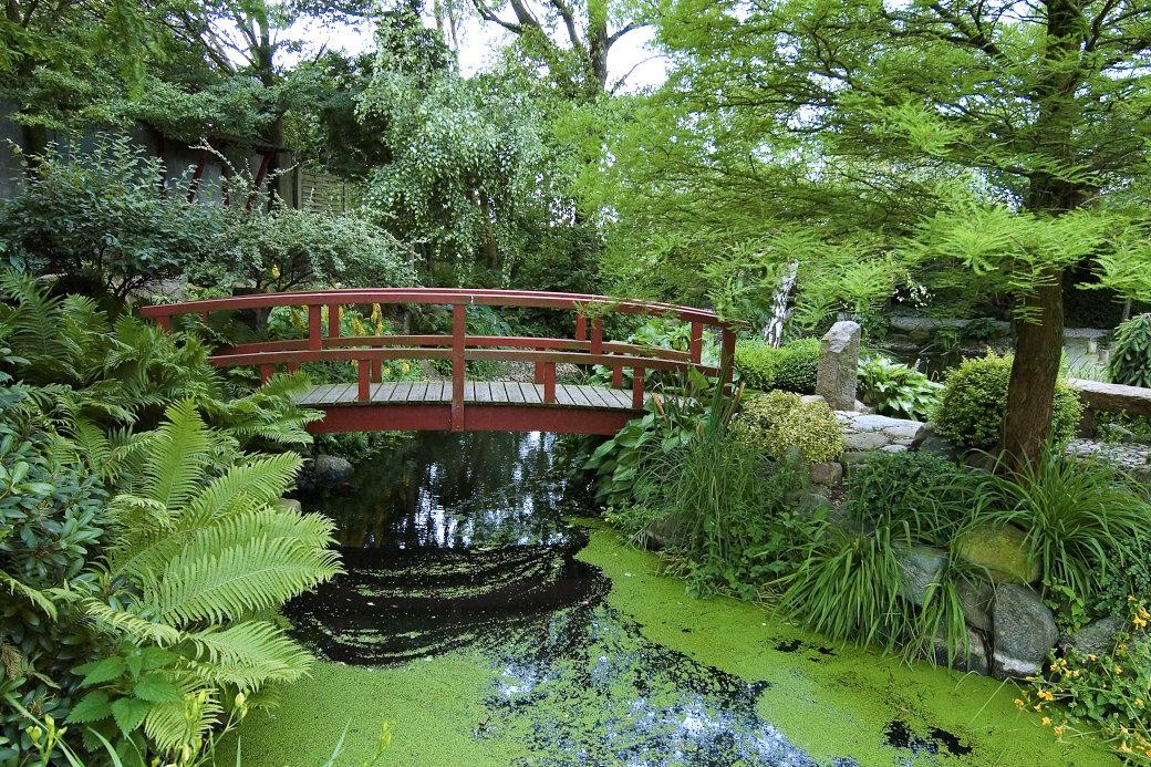 På ön Fyn i Danmark finns Hviids Have, en fyratusen kvadratmeter stor trädgård inspirerad av japansk trädgårdskonst. I den, liksom generellt i asiatiska trädgårdar, är vatten ett viktigt inslag. En stor damm dominerar åtkomlig från alla håll via stigar och broar. Variationer på blad liksom färg och form på barrväxter är viktiga inslag. Trädgården är uppbyggd mitt i det fynska slättlandskapet, innesluten av böljande sädesfält.