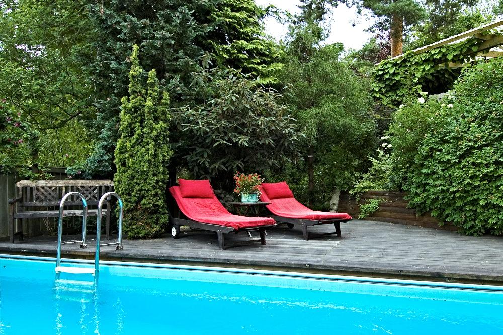 Stora växter, plank och naturliga höjdskillnader skapar ett trädgårdsrum runt poolen. Till höger syns det av pipranka inklädda taket över en högre liggande uteplats. Bild från familjen Walderös trädgård.