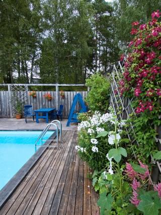 Atmosfären vid familjen Blomqvists pool i Uppland är ombonat skön med växter av olika höjd mot plank och spaljé. Med poolen nära ett skyddande plank vid tomtgränsen utnyttjas marken effektivt och insynen trollas bort, ingen kan ana att poolen inte ligger mitt i skogen utan har en allmän gångväg några få meter bort.