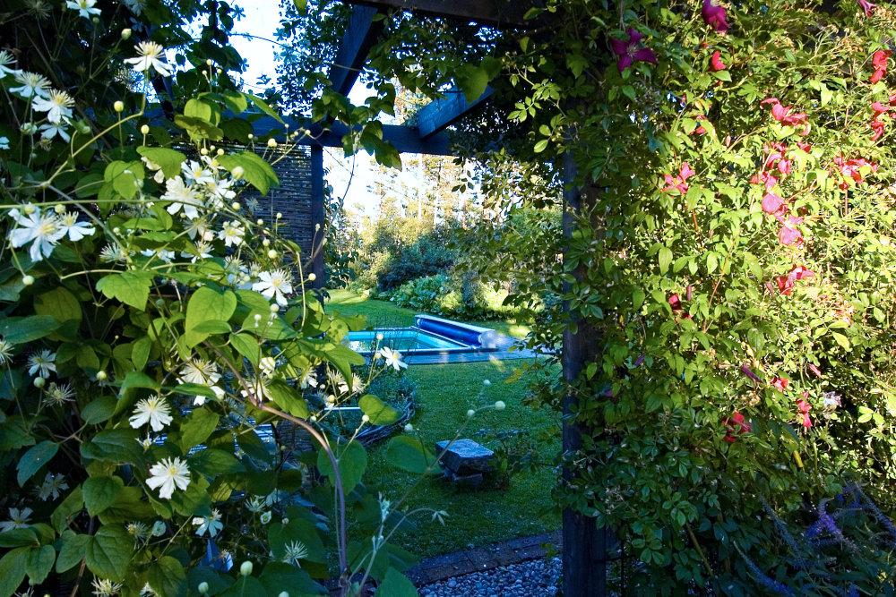 Ser det inte inbjudande ut så säg? Sedd genom öppningen i den klematisinklädda pergolan blir poolen ett vackert blickfång som smälter in i omgivande sommarstugeträdgården hemma hos Maud Persson i Hälsingland. Här är trä närmast poolen och vanligt gräs runt det självklara markmaterialet.
