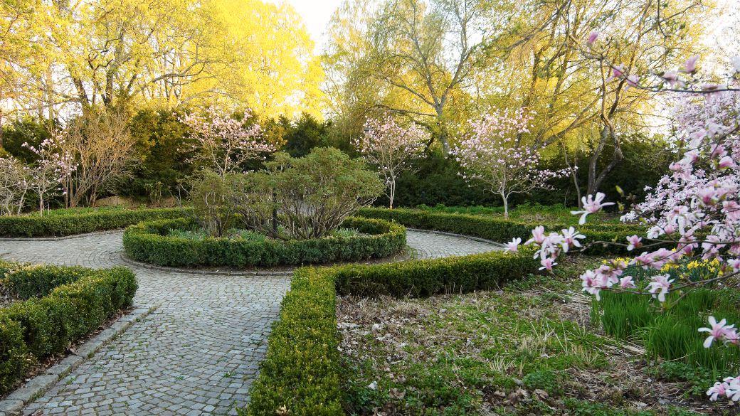 Under den tidigaste våren, ja under hela året, skapar små buxbomshäckar karaktär i Blomstergården. Även avgränsningar som bara är några decimeter höga har förmågan att distinkt skilja olika funktioner, som gångar och rabatter, åt. Man behöver inte använda meterhöga häckar för att avgränsa trädgårdsrum.