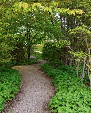 När slutet av gången enbart skönjs genom en smal böljande passage skapas spänning. I slutet av stigen ligger den öppna delen av Blombergs park. Kurviga, smala gångar inbäddade i grönska är minst lika användbara hemma.
