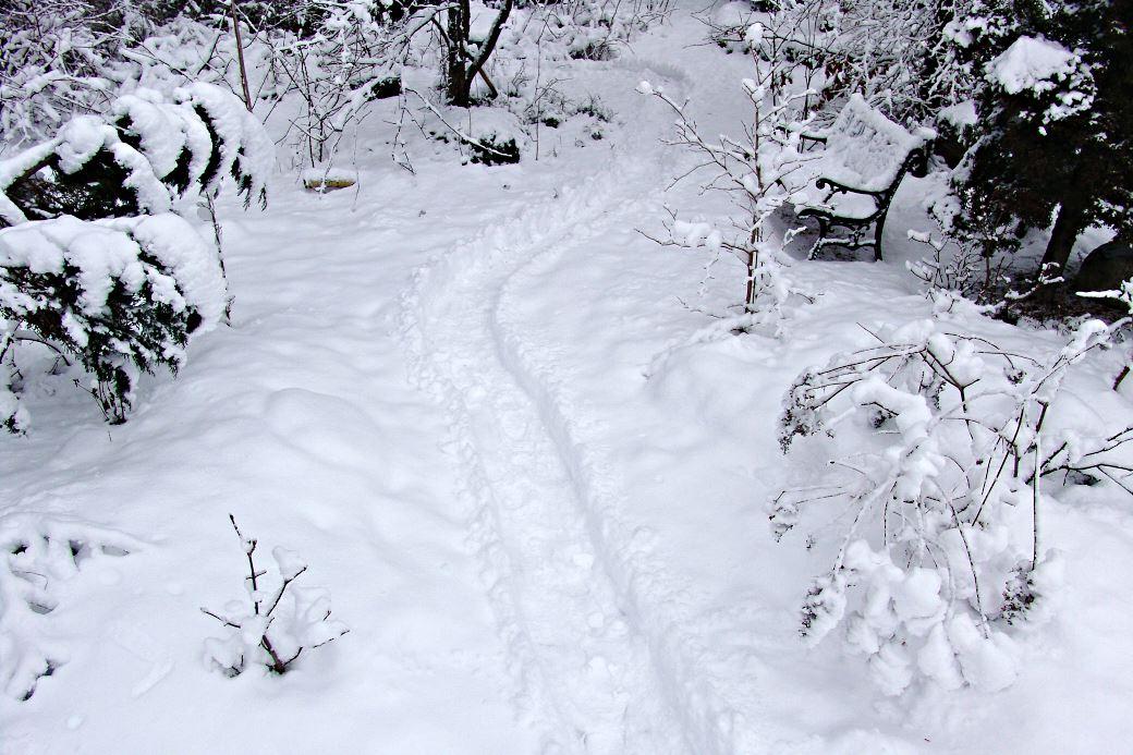 I snön kan man trampa upp gångar och pröva olika lösningar, resultatet kan studeras och fotograferas från olika håll och inifrån huset. Bild från vår egen trädgård.