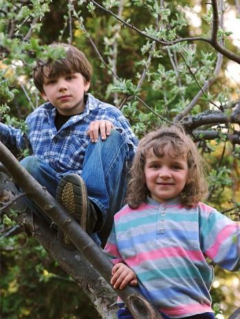 Det lutande gamla äppelträdet passar perfekt för klättring, tillräckligt stort för att tåla mer än en i taget och tillräckligt snett för att sitta bra i.