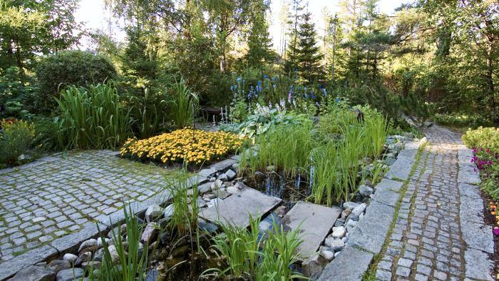 """I Villa Fraxinus norra trädgård är formspråket distinkt med tydliga rektangulära former i stenbeläggning, dammar och planteringsytor, en stiliserad avbildning av den norrländska naturen. """"Kantiga linjer med räta vinklar gör sig bäst mot naturens mjuka formsspråk. Två mjuka linjeföringar tar ut varandra medan en mjuk och en kantig förstärker varandra och skapar välbehövlig kontrast"""", tycker Sture Forsberg och Ingelöv Jonsson som skapat trädgården. Den gula kvadraten till vänster är tagetes och i vattnet växer frodiga ruggar av svärdslilja, Iris pseudacorus."""