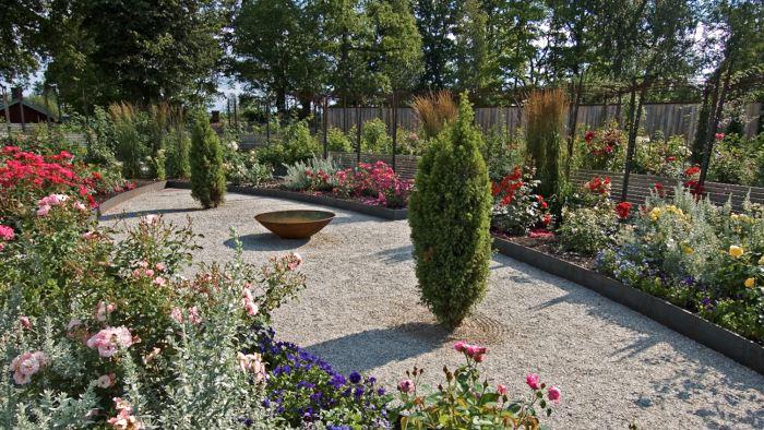 På Wij trädgårdar i Ockelbo har den nyanlagda rosenträdgården fått en stark geometrisk gestaltning som förstärker och stramar upp skönheten hos växternas skiftande färger och former. Den distinkta formen, som trots att den är symmetrisk starkt skiljer sig från traditionella formella rosenträdgårdar, bidrar också till att hela planteringen känns nydanande och spännande.