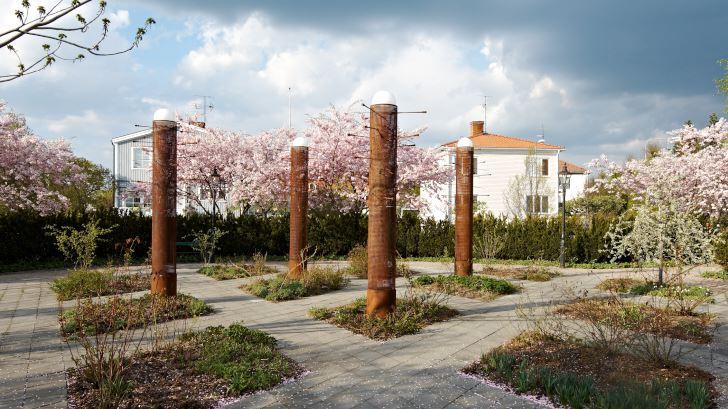 Skulpturspaljéerna bidrar till att ge rosenträdgården en tydlig karaktär och stark tredimensionell form året om. Bakom häcken av hybrididegran syns prydnadskörsbäret 'Accolade' blomma i början av maj.