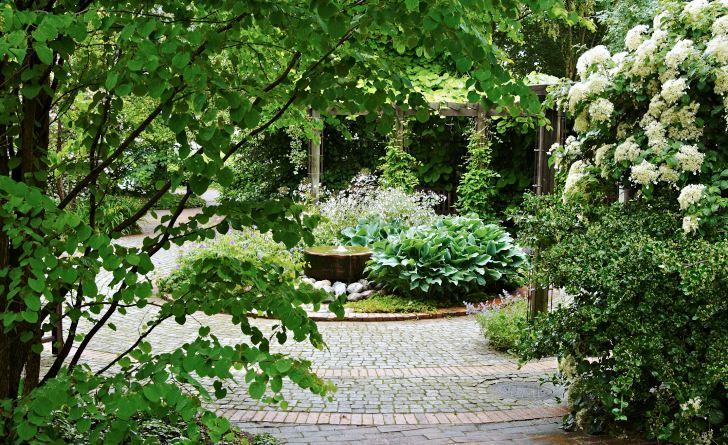 Den cylinderformade vattenporlande stenen och den utsökta perennkompositionen runtomkring bildar ett tydligt blickfång i centrum av Fridegårdsparkens cirkelrunda mittrum. Till vänster i förgrunden syns det sirliga bladverket av ett katsuraträd och de frodiga vita blommorna till höger tillhör klätterhortensia.