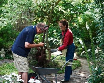 Det är mycket som måste rensas bort, trädgården är stor, jorden god och klimatet gynnsamt.