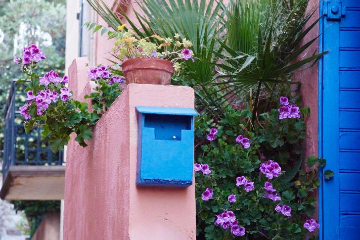 Entré, Collioure