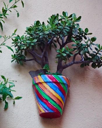Kruka på vägg, Collioure