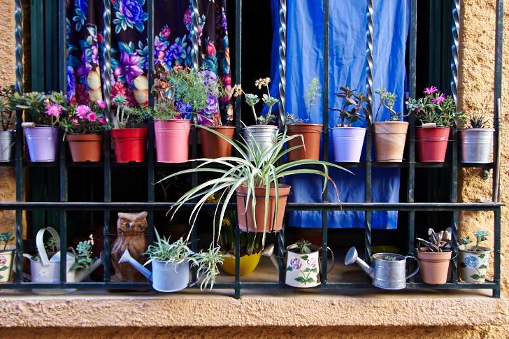 Krukor i fönster, Collioure