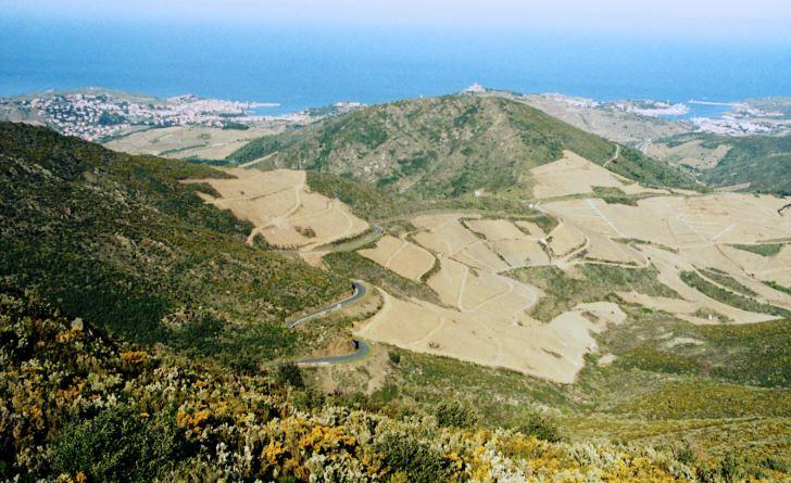 På väg upp till Tour Madeloc från Collioure år 1994