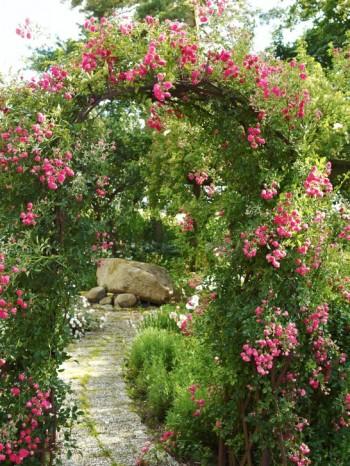 Att använda rostigt järn för pergolor är inne sedan några år. På gården Headal i Skåne tog den trädgårdsintresserade Bjarne Bengtsson en gammal pinnharv och böjde med hjälp av traktorn. Resultatet blev den här vackra pergolan.