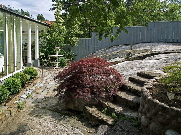 I Anna-Lena Wiboms vackra stenhällsrum avgränsas tomten gentemot grannarna med ett plank som i nivåer avpassats till höjdskillnaderna. I praktiken finns inget annat alternativ till avgränsning ens om man skulle vilja. Höjdskillnaderna i planket gör det intressant att titta på. Färgen är, liksom formen, anpassad till omgivning och hus. I förgrunden flikbladig japanlönn, Acer palmatum 'Dissectum Garnet'.