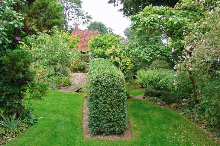 I Damgårds have på Fyn i Danmark skapar e lägre fristående häck trädgårdsrum och döljer vad som väntar bakom hörnet. Den klippta häcken utgör en lugn kontrast gentemot den omgivande växtlighetens yviga former och förstärker trädgårdens struktur.