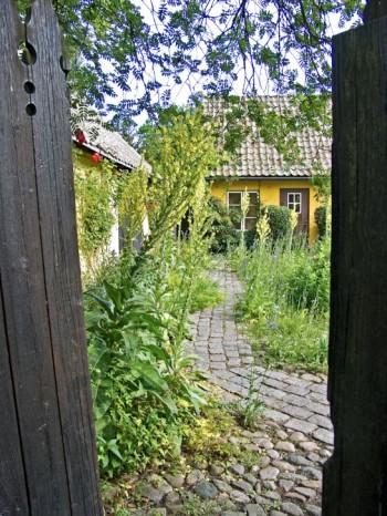 Tak, väggar och golv skapar trädgårdsrum. Under en rönn, genom en dörr i en plankvägg mellan två hus, kommer man ut på den stenlagda innergården på Maryhill i Lund.