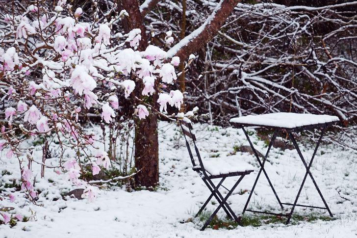 Det lilla bordet vid den lilla stolen invid 'Leonard Messel'