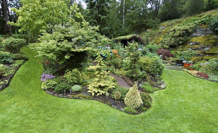 Gräsmatta kan användas för att skapa gångar bland rabatter. Hos Birgit och Curt Eliasson i Veddige skapas enhetlighet planeringsytorna binds samman. Mellan vindlande stråk av gräs går grusade gångar upp genom rabatterna och skapar åtkomlighet för trädgårdsarbete och spännande promenader.