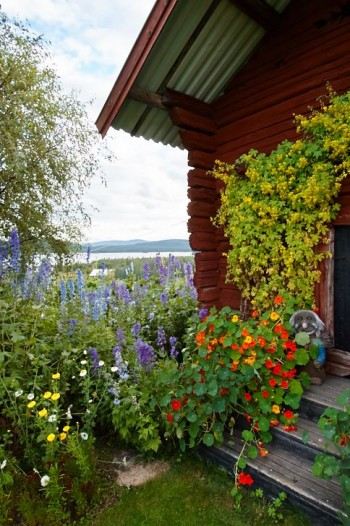 Med utsikt över sjön Soutujärvi hemma hos Marianne Orrmalm, 8 augusti 2004.