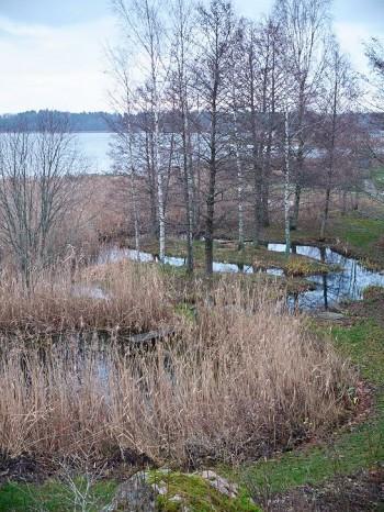 I naturen flödar vattnet fram och tillbaka över flacka områden, meandrar kallas det. Alltså får det ingå också i antroposofernas reningsanläggningar.