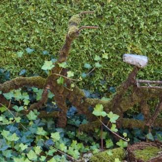 ♦ Fler tips för charmig trädgård ♦