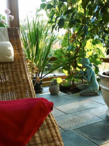 I ett av vinterträdgårdens hörn står en vindruva nedgrävd i jorden. Den har en idealisk tillvaro med varma, soliga somrar, svala vintrar och stort utrymme för rötterna. Sällskapsdam är en bronsstaty, en födelsedagspresent till Thomas. Vilstolen gör det till ett bra ställe även för oss människor.