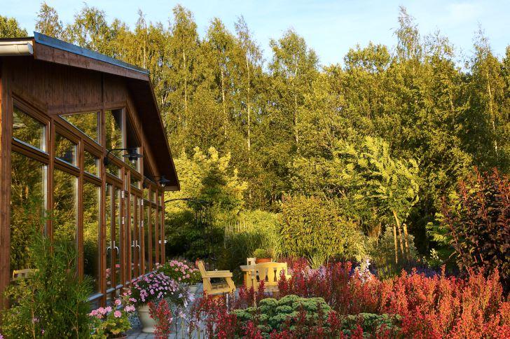 I direkt anslutning till vinterträdgården ligger uteplatsen omgiven av robusta buskar och perenner. I förgrunden bäddar rödblommig alunrot, Heuchera, in en kärleksört, Hylotelephium telephium, som ännu ej slagit ut.