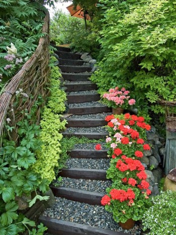 En behagfullt böjd trappa av trä och grus inbjuder besökaren att vandra upp till andra terrassplanet i makarna Söderlunds trädgård i Sundsvall. Den frodiga växtligheten som väller in hålls efter med försiktig men bestämd hand. Alltför mycket grönska på trampytorna kan bli slipprigt och halt. Runt trappan växer bland annat rönnspirea, doftschersmin, limegul rosenplister och rikligt blommande blekrosa stjärnflocka. Längs flera av trappstegskanterna står krukor med röda och rosa pelargoner. Ett annorlunda räcke av flätad pil ger stöd för handen.