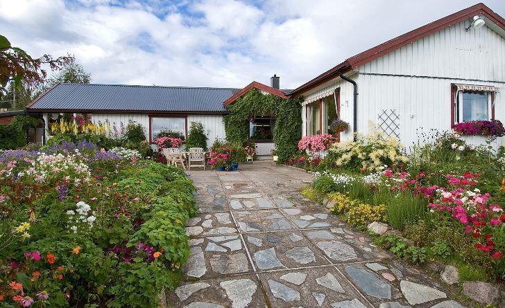 I Gunborg Orrmalms trädgård i Poultikasvaara, ungefär tio mil norr om polcirkeln, ligger snön djup under en stor del av året. För att inte de undanskottade snöhögarna ska ligga och trycka ihop växter och jord i rabatterna, har husets entrégång gjorts så pass bred att det finns plats att lägga snöhögarna direkt på den i stället.