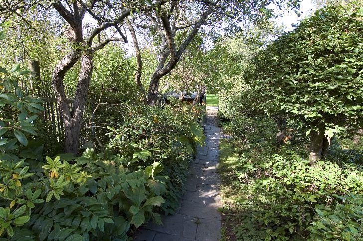 Siktlinje mot ingången till trädgården och angränsande grönområdet med gamla fruktträd.
