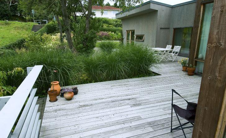 Ett trädäck lagt strax ovan markytan ansluter elegant till omgivningen utan att skapa den avskärmning mellan uteplats och trädgård som kännetecknar uppbyggda trädäck. Det här däcket av lärkträ, hos Ingrid Björkman i Båstad, får en vacker gråaktig lyster redan efter någon säsong i utomhusklimat, gör sig mycket bra mot grönskan och är hållbart trots att det inte är impregnerat.
