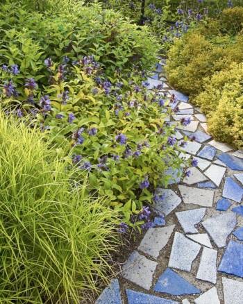 Vanliga betongplattor målade i blått, slagna i bitar och oregelbundet lagda. Växterna matchar i blått mixat med limegult. Palmstarr, Carex muskingumensis, skuggneoeta, Nepeta subsessilis, och frossört, Scutellaria incanana till vänster och jättedaggkåpa, Alchemilla mollis till höger. Bild från Blå trädgården i Enköping.
