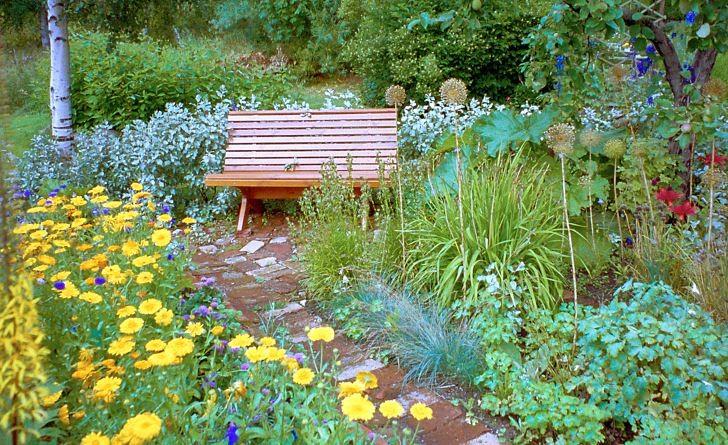 Via en smal stenlagd gång genom den stora rabatten når man den enkla träbänken placerad mot en låg vägg av silverbuskar och med skyddande träd på ömse sidor. Här är det lockande att slå sig ner för att njuta av den prunkande växtligheten i Sörviksvillans trädgård utanför Sundsvall. Med skydd i ryggen, om än lågt som här, känns sittplatsen tryggare och mer inbjudande. De gula flata blommorna till vänster är ettåriga ringblommor, Calendula officinalis, som villigt självsår sig och kommer igen år för år.