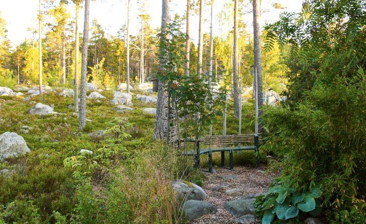 Utnyttja närheten till naturen om det går. Skapa naturliga gångar och sittplatser i skogskanten. Även ganska exotiska växter som bergbambu Fargesia murielae fungerar bra i fuktig skogsmiljö. Bild från Göran och Maud Perssons trädgård som ligger i ett fritidshusområde efter Hälsingekusten.