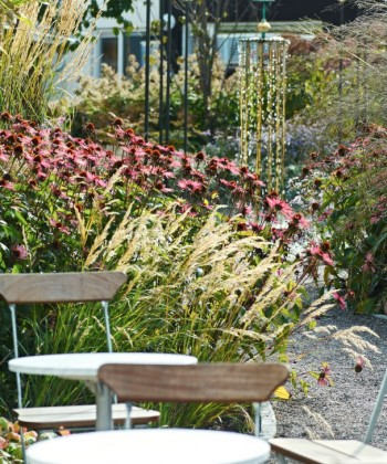 Höga men lågmälda perenner lämpar sig till moderna träfasader. I förgrunden silvergräs, Achnatherum calamagrostis, framför ett bestånd av röd rudbeckia. Till vänster skymtar det eleganta tuvröret 'Karl Foerster'.