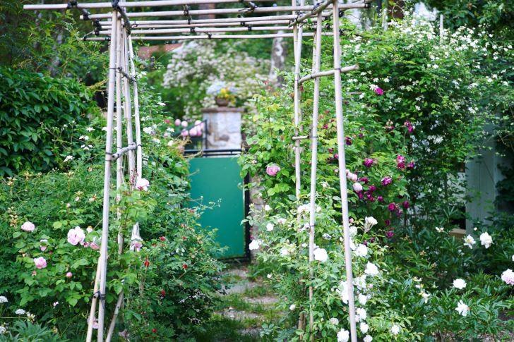 Rosenpergola av bambu hos Anna-Lena Wibom Lidingö.
