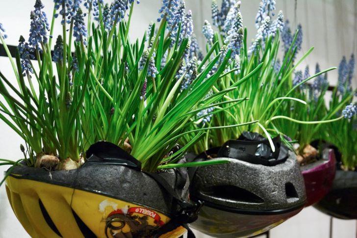 Låt vårens första lökar spira i dina gamla idrottsprylar.