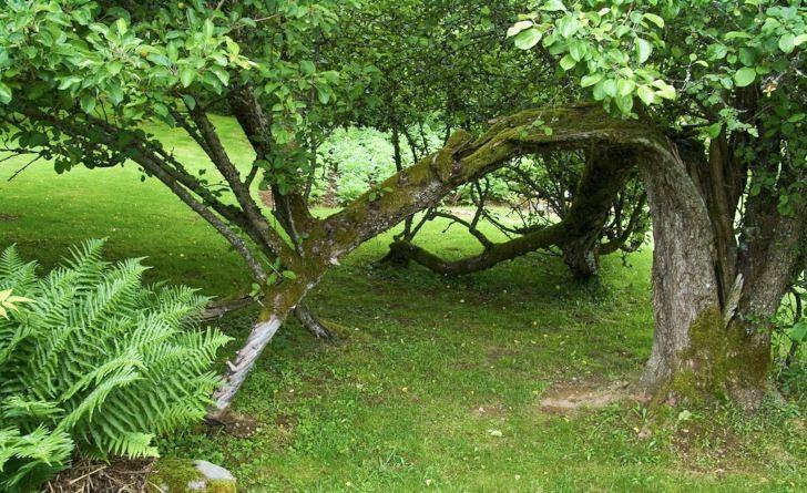 Invid lekstugan på Drömmens trädgård finns en magisk port att krypa under.