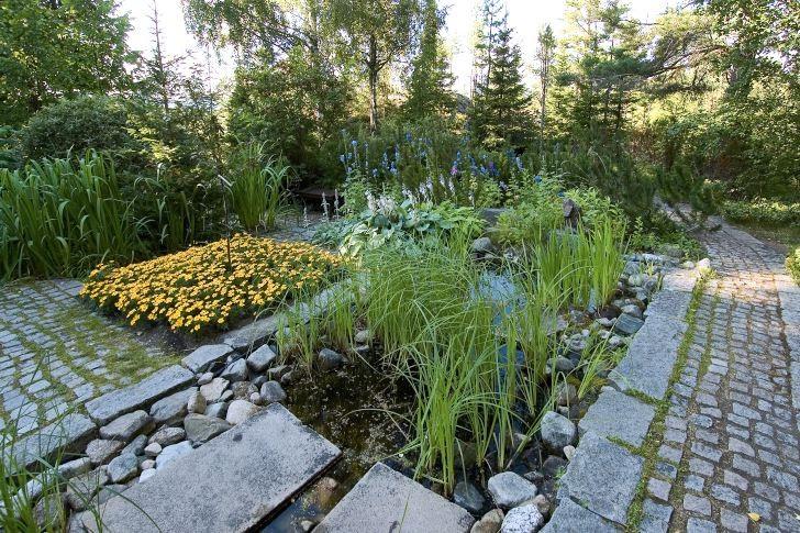 Stengången i den norra trädgården fortsätter rakt ut i skogen. Här liksom i den södra trädgården är marken uppdelad i rektangulära ytor bestående av vatten, växter och sten. Den gula kvadraten till vänster är består av tagetes och i vattnet växer frodiga ruggar av svärdslilja, Iris pseudacorus.
