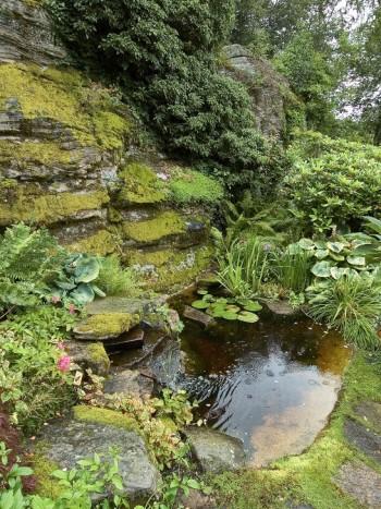 Den som är begåvad med en liten bergvägg på tomten kan skapa ett vattenfall som mynnar i en naturlik damm. Passar idealiskt där trädgården övergår till naturmark. Bild från Birgit och Curt Eliasson i Veddige.