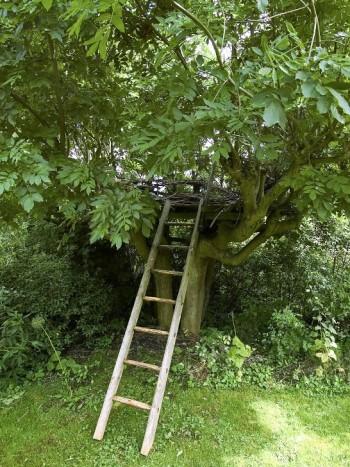 Tycker barn en stege rakt upp i klätterträdet där det finns en platå är kul? Självklart. Trädkojan är byggd av Sven-Ingvar Andersson med assistans av sina barnbarn.