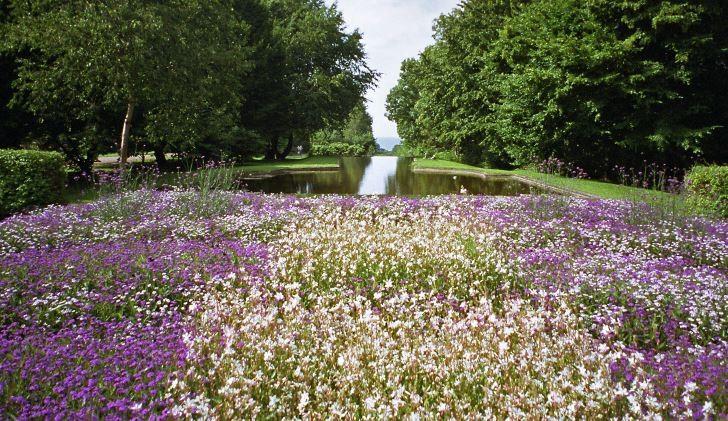 På Norrvikens trädgårdar skapade Rudolf Abelin en klassisk utsikt där han lät vattenytan försvinna ut mellan en öppning i träden och nästan flyta ihop med Laholmsbuktens vatten. Från vissa positioner ser det ut som om vattenytorna går ihop helt och hållet.
