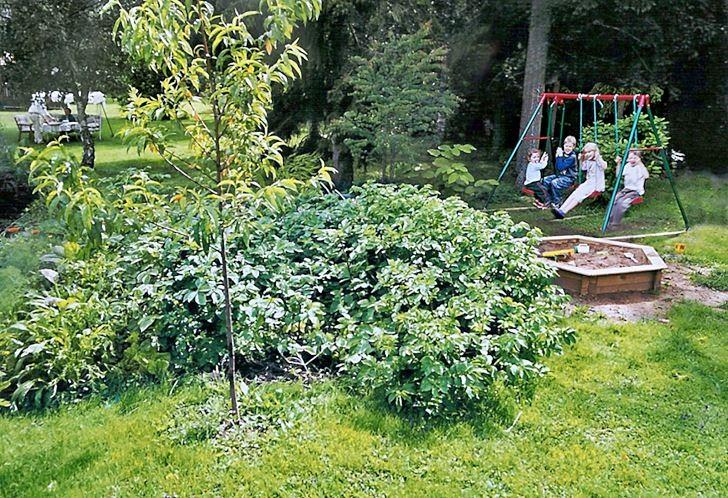 Om man inte vill göra det svårt för sig kan man köpa en metallgungställning, av gott fabrikat, och ställa i sin trädgård. En gunga är en given succé, och de verkar tåla en hel del belastning. Bild hemma från vår trädgård.