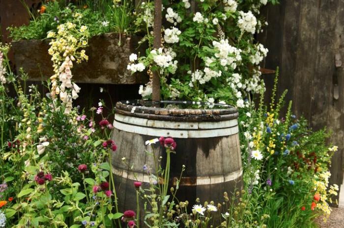 Regnvatten i en tunna., speciellt för växter som inte gillar kalk.