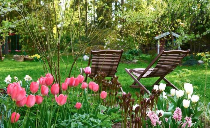 Tulpanerna 'Pink Impression' och 'White Dream' med hyacinten  'Pink Pearl'.