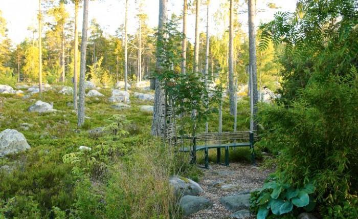 En enkel bågformad sittplats mellan vild natur och trädgård. Här frodas trädgårdsväxter sida vid sida med blåbärs-och lingonris. Bergbambu. Fargesia murielae, böjer sig graciöst över funkior som hittat tillräckligt med fukt för att trivas mellan stenarna.